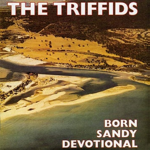 The Triffids - Born Sandy Devotional -